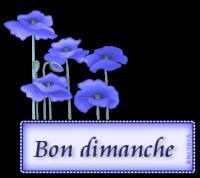 creachou-blinkie-291.png
